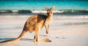 Âge limite PVT Australie